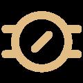 iconEE